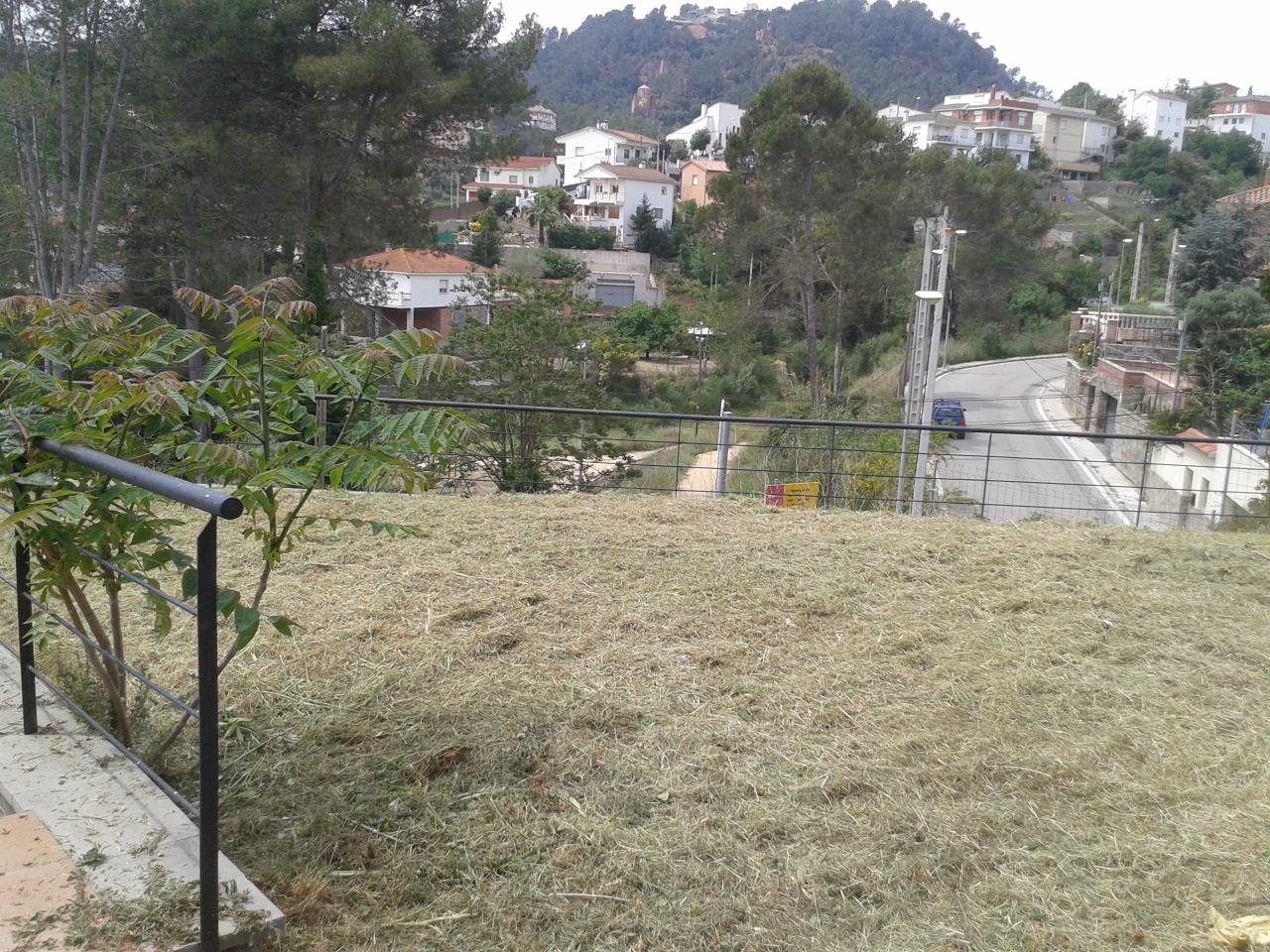 Serviciosdejardineriabasica marzo 2016 for Jardineria barata barcelona