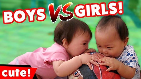 Boys vs Girls! Cute And Hilarious Sibling Rivalries Caught On Camera