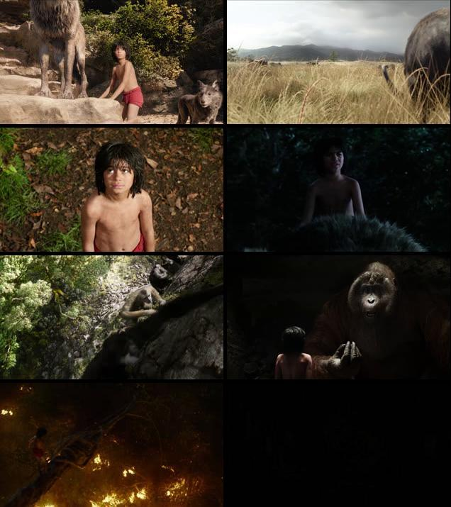 The Jungle Book 2016 English 720p BRRip 950mb