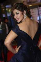Payal Ghosh aka Harika in Dark Blue Deep Neck Sleeveless Gown at 64th Jio Filmfare Awards South 2017 ~  Exclusive 048.JPG