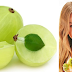 Marvelous Gooseberry benefits and Its Nutritional value