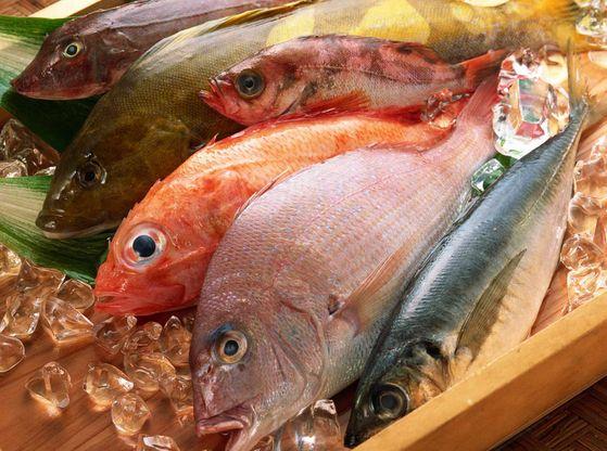 Gambar Manfaat Ikan Untuk Kesehatan Tubuh Kita