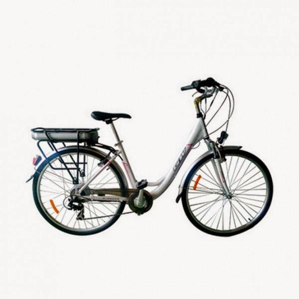 EQUILIBRIUM EQUIPOS DE GIMNASIA: Bicicletas eléctricas con