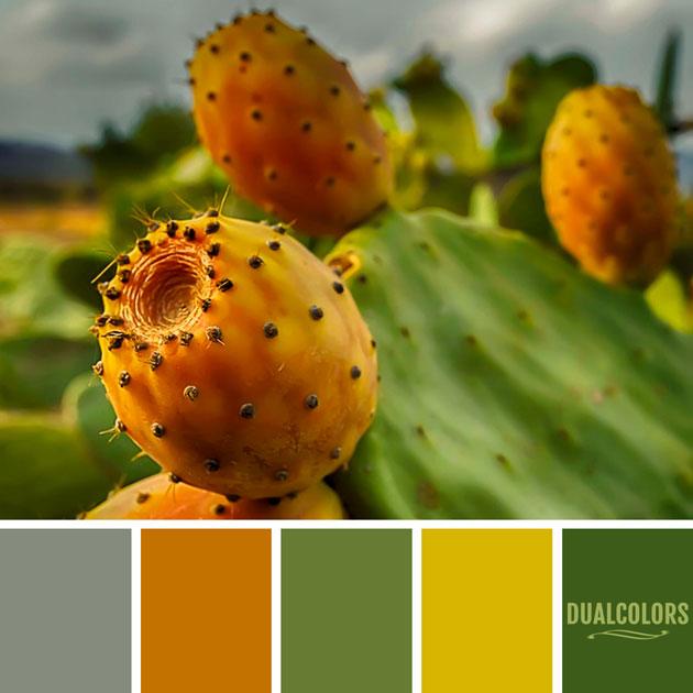 color_paleta_229