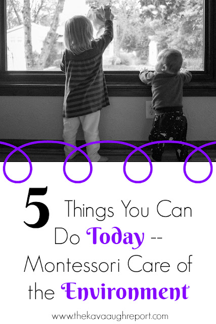 5 Montessori things you can do today to make care of the environment work available to your child
