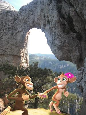 Moletes d'Arany monos