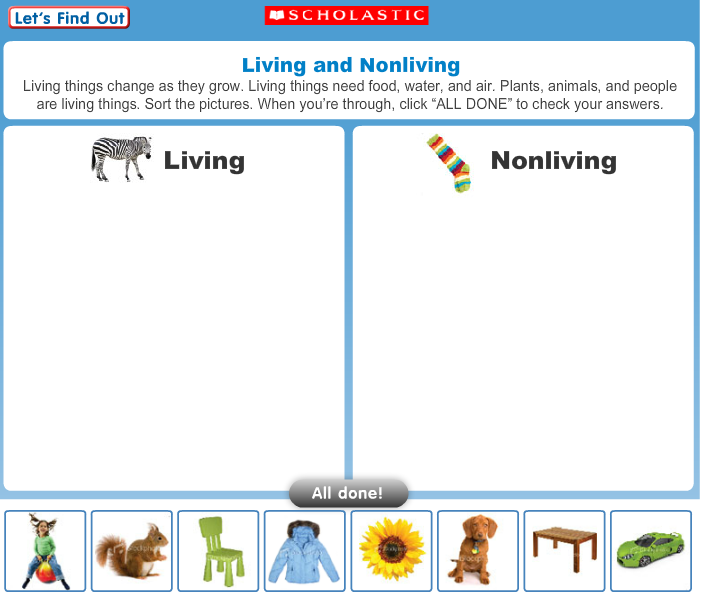 Science Blog 5th Year Living And Non Living Things