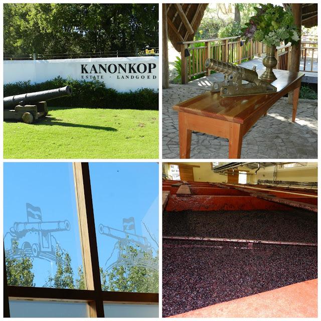 Degustação de vinho na vinícola Kanonkop (em Stellenbosch), África do Sul