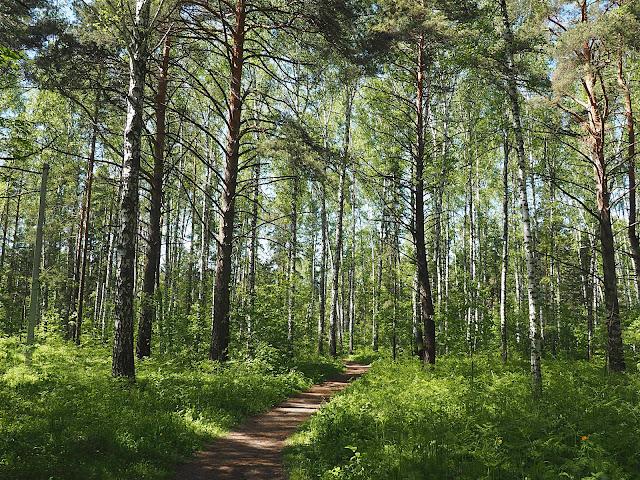 Новосибирск, Академгородок - Ботанический сад (Novosibirsk, Akademgorodok - The Botanical Garden)