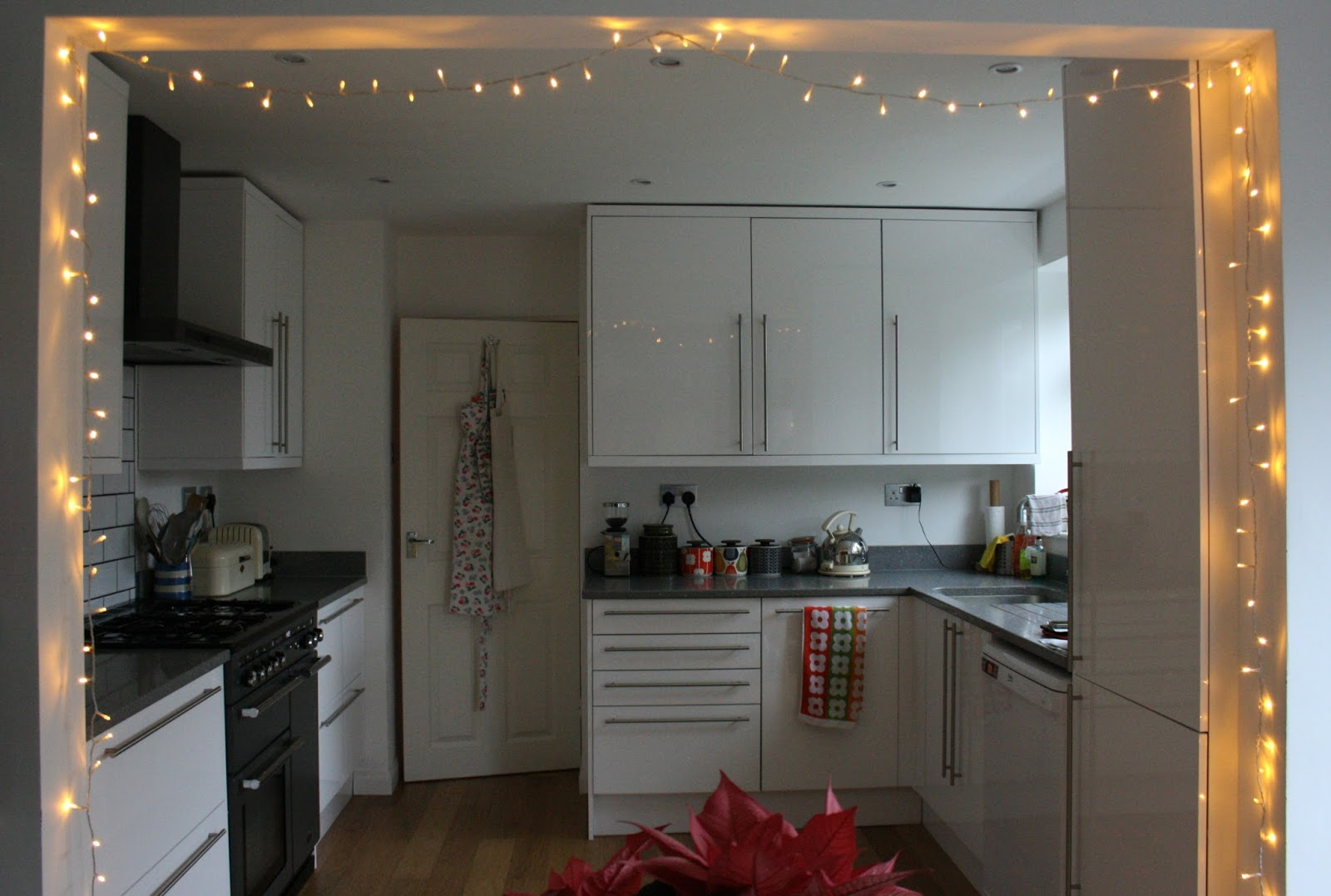 The Fairy Lights Are Still Up & Tales from a happy house.: The Fairy Lights Are Still Up