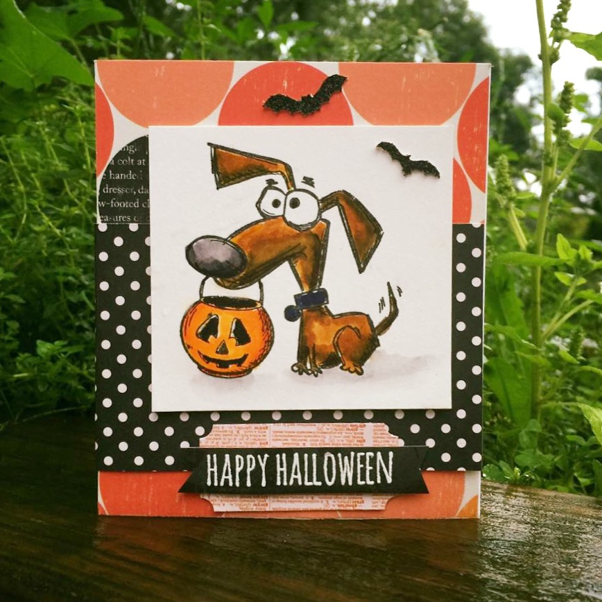 Crazy Halloween Decorations: Lorrie's Story: Halloween Crazy Dog Cards