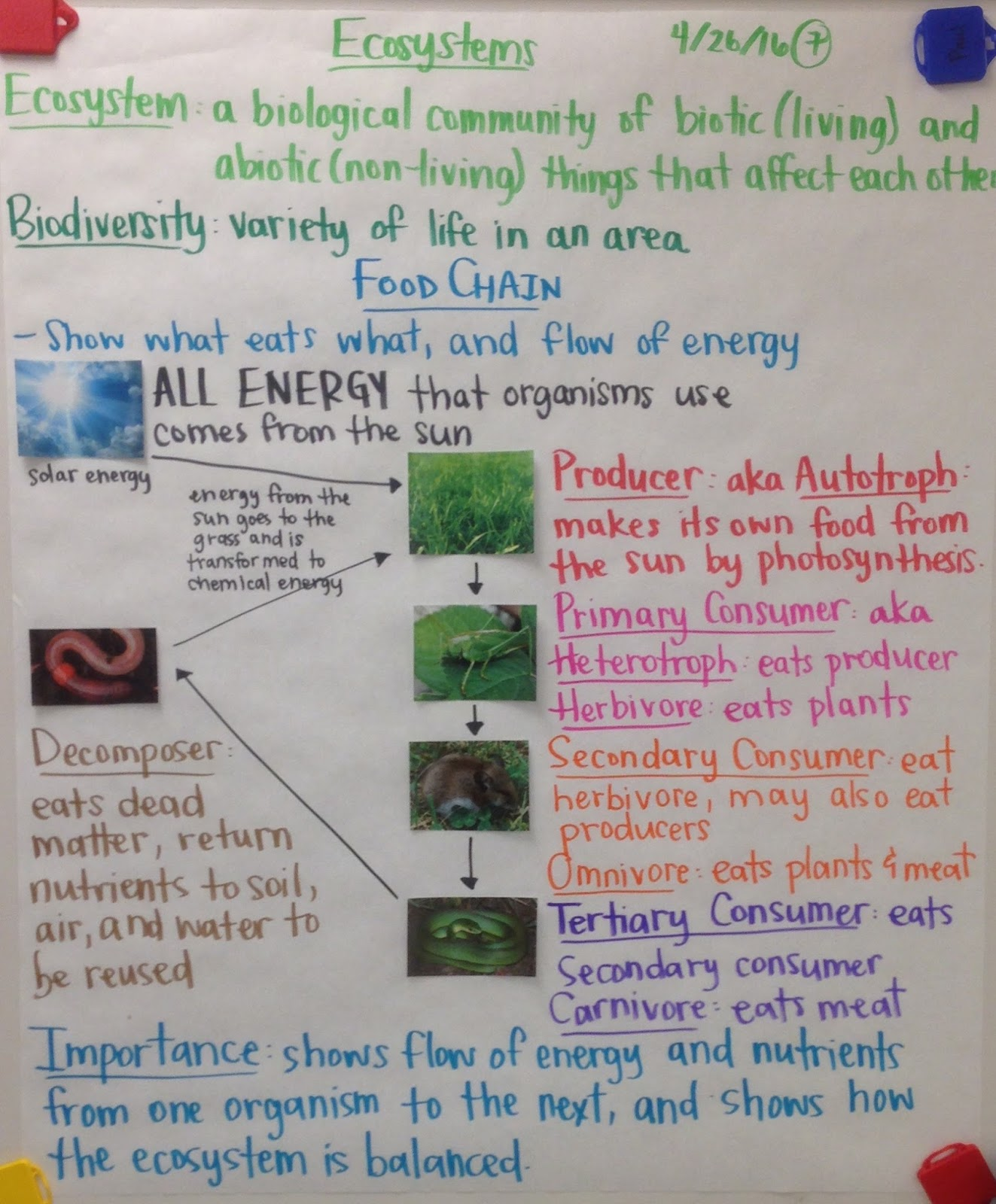 biology ecosystem notes Energy flow in an ecosystem  this energy flow is based on two  our mission is to provide an online platform to help students to share notes in biology.