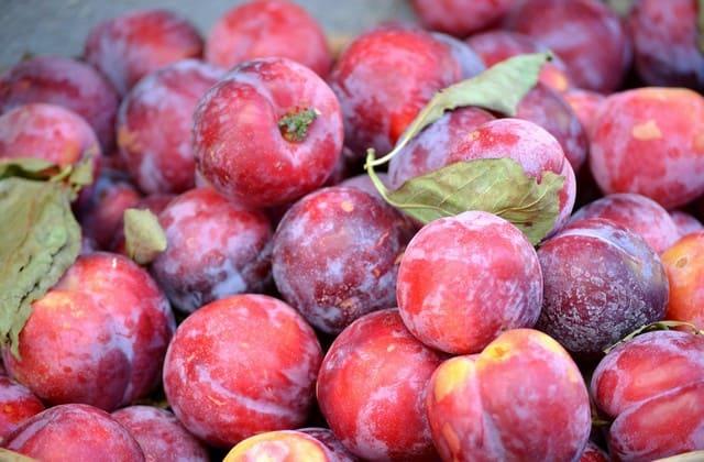 Biar daya tahan tubuh tetap terjaga, kamu wajib konsumsi plum setiap hari