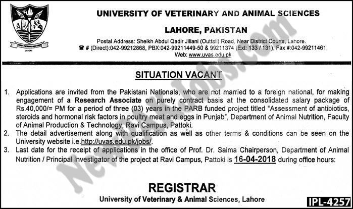 University of Veterinary and Animal Science Latest Today 07 April Jobs