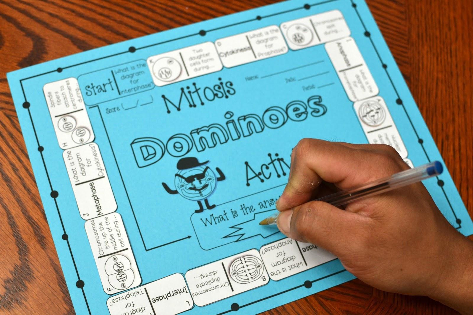 Mitosis Dominoes Activity