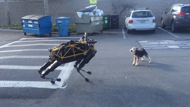 fido-vs-spot-animal-vs-robot