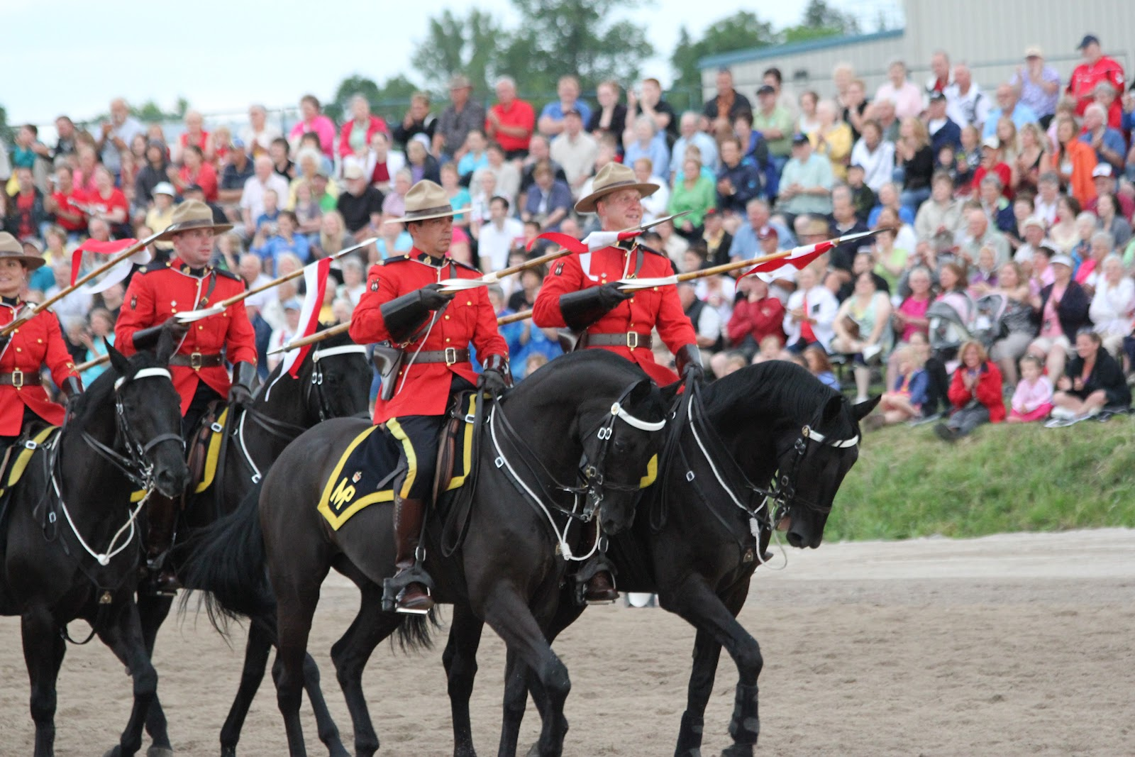 Royal Canadian Mounted Police Horses And Their Jobs