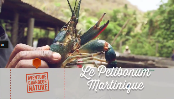 Le Petit Bonum Restaurant Martinique Le Carbet