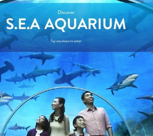 Tiket S.E.A Aquarium Singapura Promo