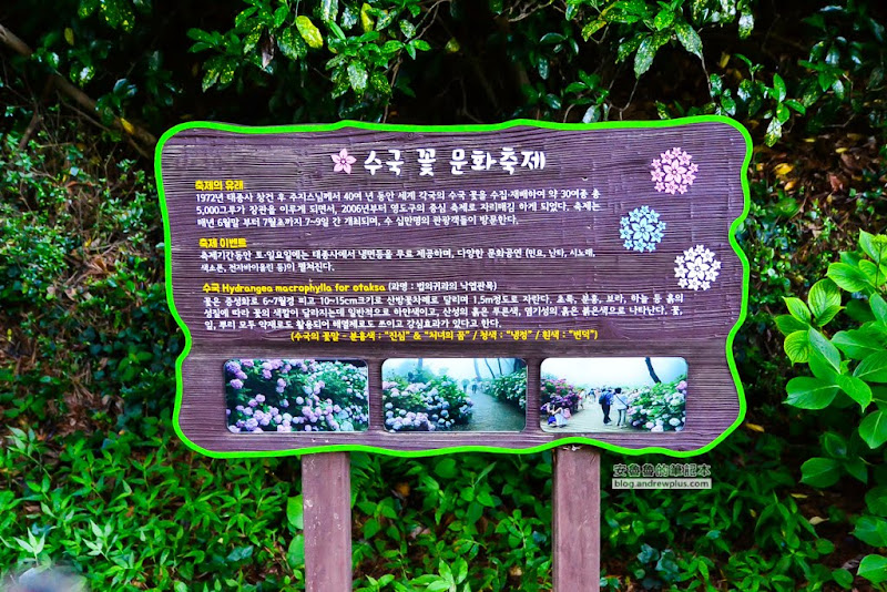 Taejongdae-24.jpg