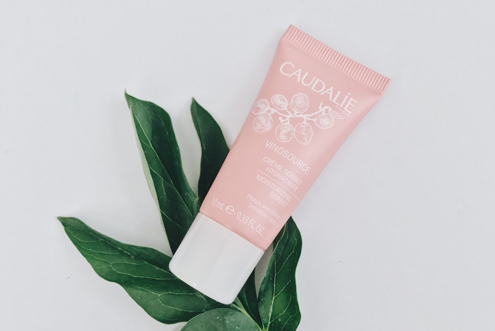 Caudalie Vinosource Moisturizing Sorbet: Review by The Jen Project. Smells sweet and delicious but doesn't moisturize my combination skin enough.