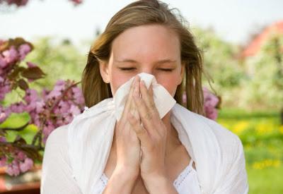 Viêm mũi dị ứng dễ mắc vào mùa xuân