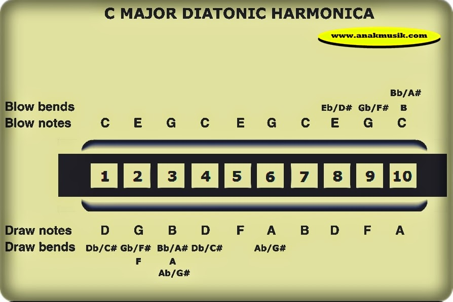 Tabulature Harmonika