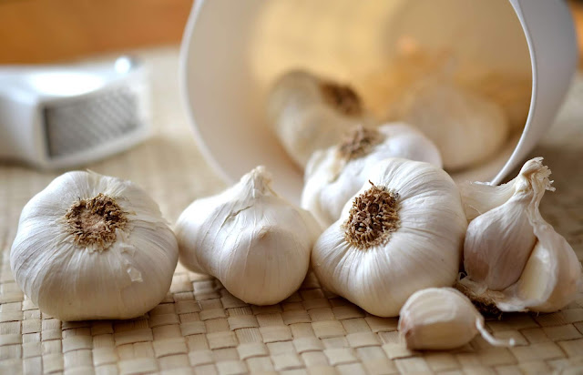 Softneck white garlic