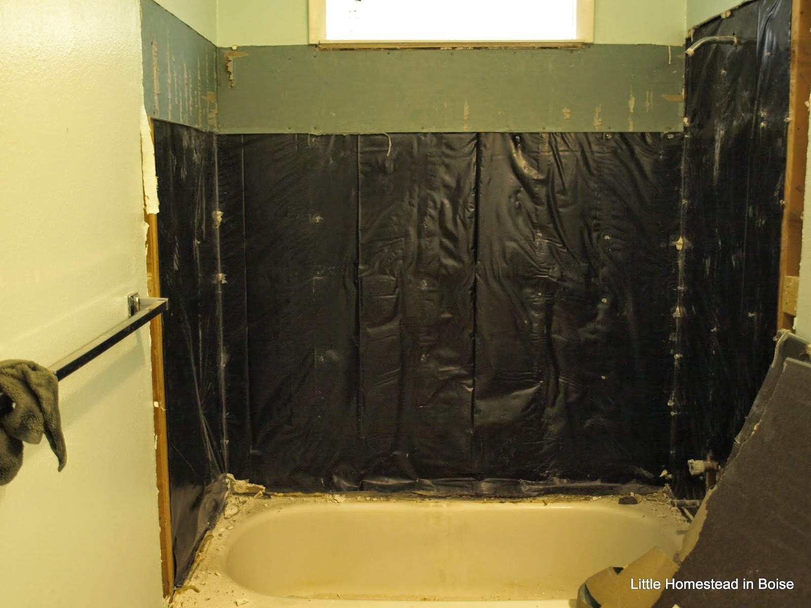 Little Homestead In Boise : Bathroom Remodel Starts- Day 1 ...
