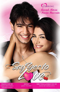 Download Say Yes To Love (2012) - 1/3 Dvdscr - XviD