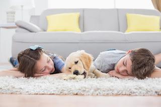 Centreville Carpet Installation VA