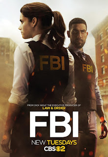 F.B.I.: Season 1, Episode 11