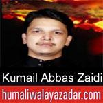 https://www.humaliwalyazadar.com/2018/09/syed-kumail-abbas-zaidi-nohay-2019.html