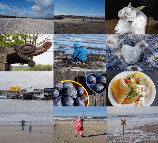 Küste und ganz viel Mee(h)r: Unsere schönsten Bilder aus dem 2. Halbjahr 2017. Auf Küstenkidsunterwegs zeige ich Euch, was wir in den zweiten sechs Monaten von 2017 alles erlebt haben und nehme mit meinen schönsten Fotos an der Fotoparade #FopaNet teil!