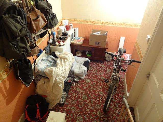 messy hallway during kitchen renovation