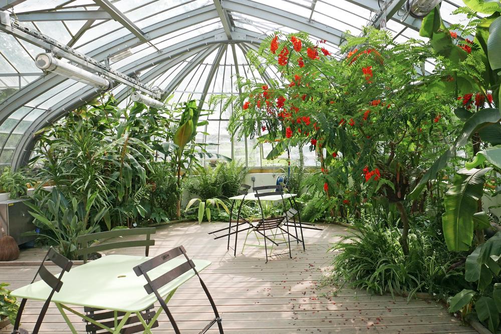 à l'intérieur d'une des serres Dans le jardin des plantes de Nantes