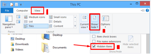 showing hidden files in windows 10