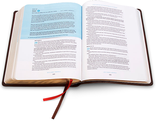 Day by Day Chronological Bible #ad #giveaway #csbBibleL3