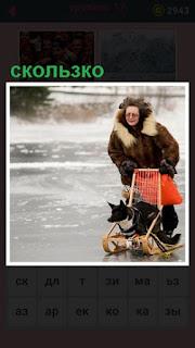 женщина на санках везет собаку, сколько идти по льду