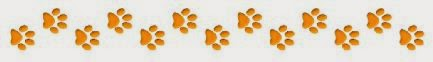 light brown paw prints to separate