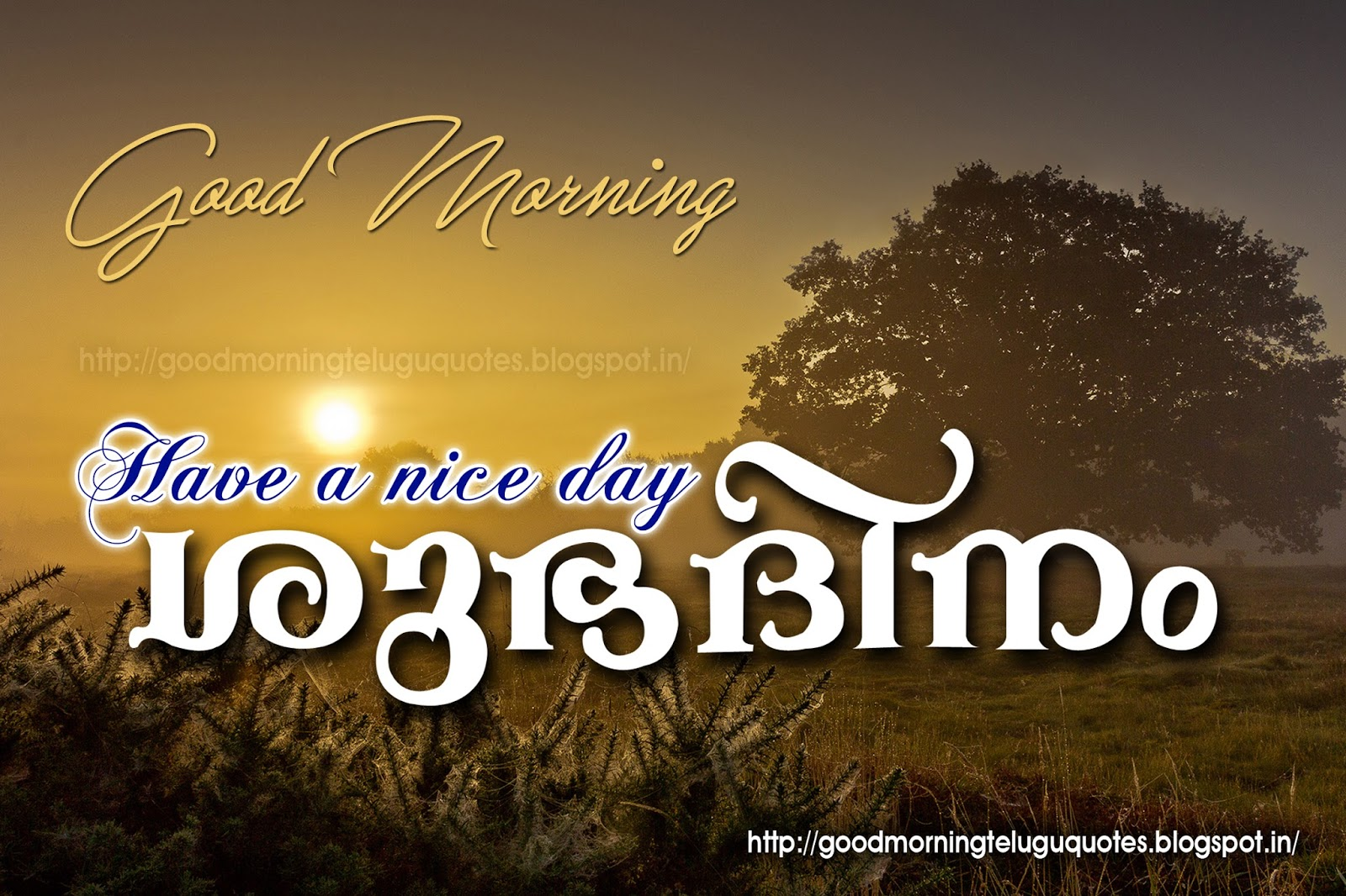 Good Morning Wishes And Malayalam Quotes With Nice Images