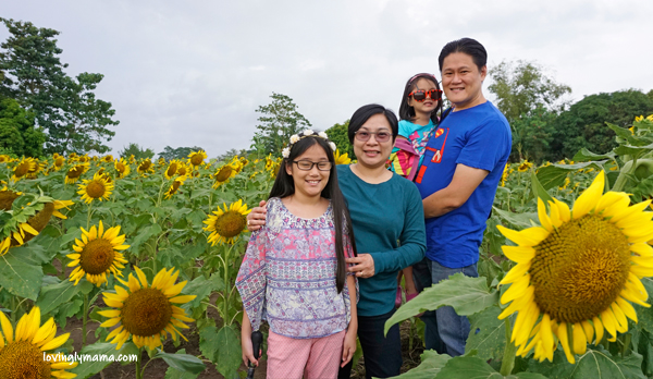 family travel - OISCA Sunflower garden - family trip - Bacolod blogger - Bacolod mommy blogger