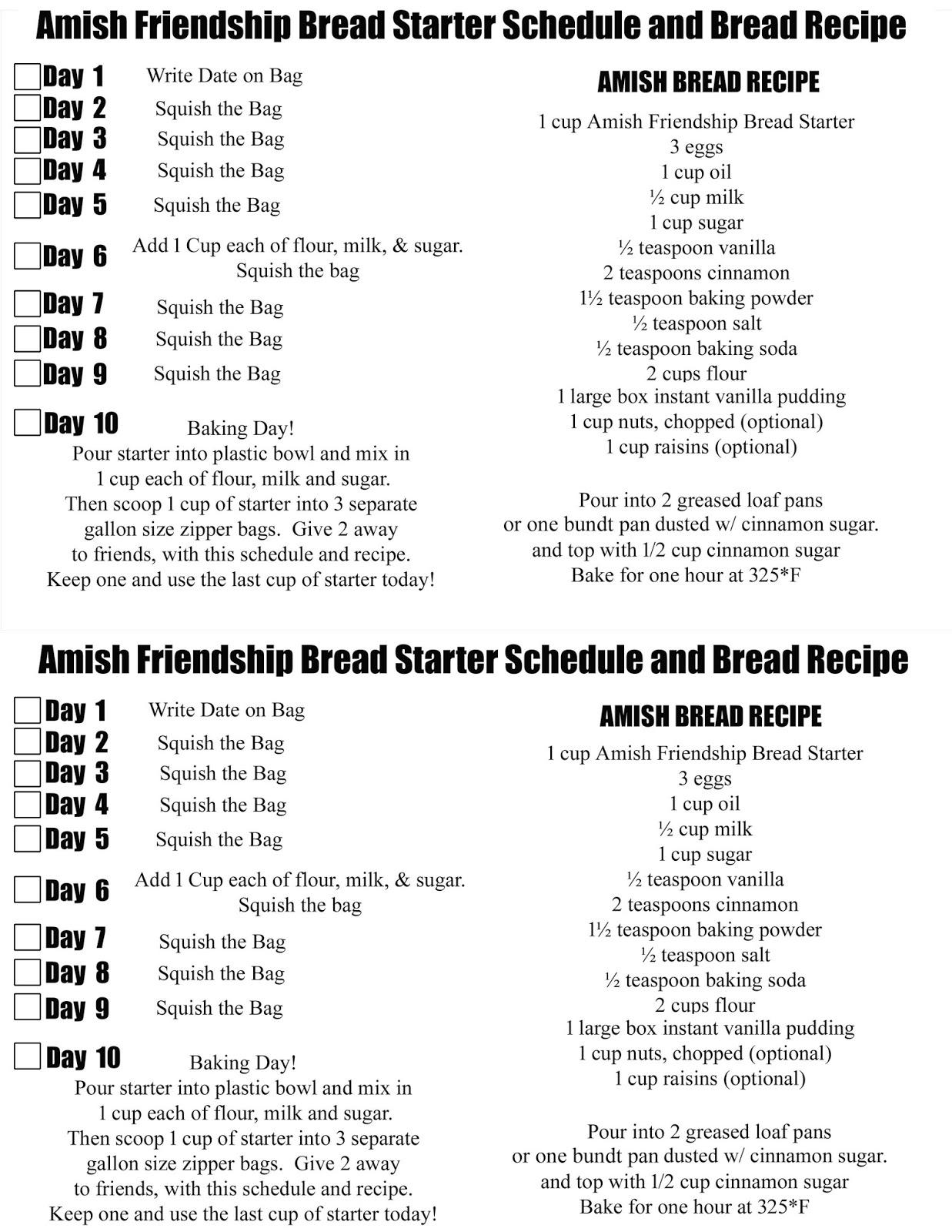 Amish Friendship Bread Starter And Recipe