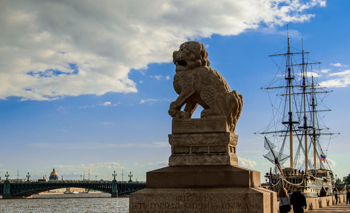Китайские львы фото
