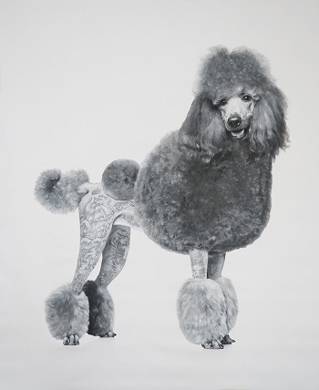 """Poodle"" by Zoe Byland - acrylic and airbrush on canvas 