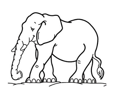Coloring Pages Zoo Elephant