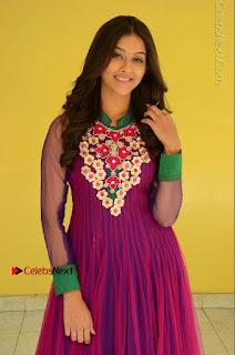 Actress Pooja Jhaveri Latest Stills in Purple Salwar Kameezt at Dwaraka Success Meet  0095.JPG