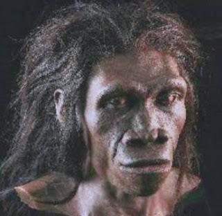pengertian manusia wajak homo sapiens