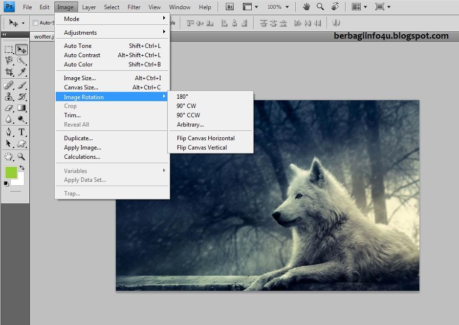Mudahnya Memutar Atau Membalik Gambar Dan Foto Di Photoshop On Tips Tech