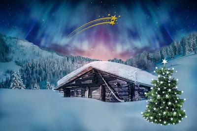 Gambar Gambar POHON NATAL KEREN untuk Background Banner dan Kartu Ucapan
